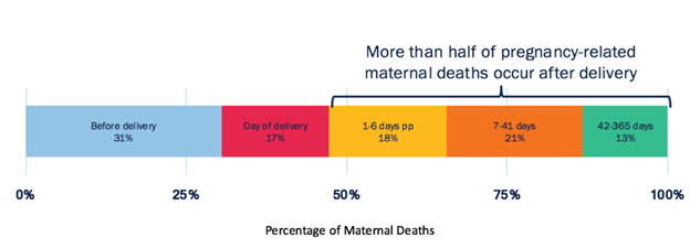 Chart of pregnancy-related maternal deaths